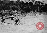 Image of OSS interrogation of captured Japanese Burma, 1944, second 58 stock footage video 65675072043