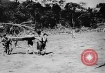 Image of OSS interrogation of captured Japanese Burma, 1944, second 59 stock footage video 65675072043
