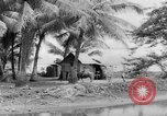 Image of Chamorro natives Guam, 1939, second 17 stock footage video 65675072054