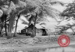Image of Chamorro natives Guam, 1939, second 19 stock footage video 65675072054