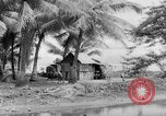 Image of Chamorro natives Guam, 1939, second 20 stock footage video 65675072054