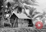 Image of Chamorro natives Guam, 1939, second 43 stock footage video 65675072054