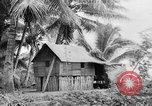 Image of Chamorro natives Guam, 1939, second 44 stock footage video 65675072054