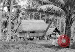 Image of Chamorro natives Guam, 1939, second 46 stock footage video 65675072054