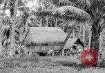 Image of Chamorro natives Guam, 1939, second 48 stock footage video 65675072054