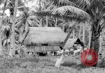 Image of Chamorro natives Guam, 1939, second 51 stock footage video 65675072054