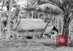 Image of Chamorro natives Guam, 1939, second 58 stock footage video 65675072054