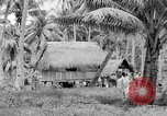 Image of Chamorro natives Guam, 1939, second 59 stock footage video 65675072054