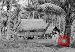 Image of Chamorro natives Guam, 1939, second 60 stock footage video 65675072054