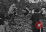 Image of American soldiers Guam, 1945, second 44 stock footage video 65675072059