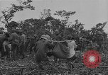 Image of American soldiers Guam, 1945, second 56 stock footage video 65675072059