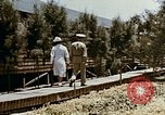Image of Alien internment medical facility Crystal City Texas USA, 1943, second 18 stock footage video 65675072067