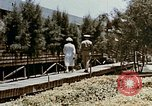 Image of Alien internment medical facility Crystal City Texas USA, 1943, second 21 stock footage video 65675072067