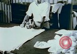Image of Alien internment sewing projects Crystal City Texas USA, 1943, second 62 stock footage video 65675072071