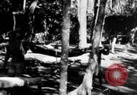 Image of Chinese casualties evacuated Burma, 1943, second 41 stock footage video 65675072107