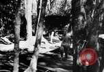 Image of Chinese casualties evacuated Burma, 1943, second 44 stock footage video 65675072107