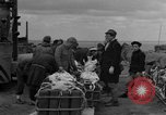 Image of combat cargo Japan, 1951, second 11 stock footage video 65675072149