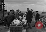 Image of combat cargo Japan, 1951, second 15 stock footage video 65675072149