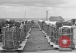 Image of combat cargo Japan, 1951, second 18 stock footage video 65675072149