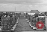 Image of combat cargo Japan, 1951, second 20 stock footage video 65675072149