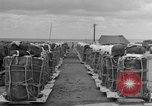 Image of combat cargo Japan, 1951, second 23 stock footage video 65675072149