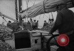 Image of oyster fishing New Jersey United States USA, 1946, second 13 stock footage video 65675072232