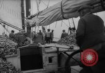 Image of oyster fishing New Jersey United States USA, 1946, second 15 stock footage video 65675072232