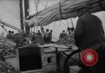 Image of oyster fishing New Jersey United States USA, 1946, second 16 stock footage video 65675072232