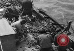 Image of oyster fishing New Jersey United States USA, 1946, second 19 stock footage video 65675072232