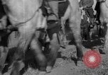 Image of Chinese troops Shanhaikwan China, 1933, second 40 stock footage video 65675072243