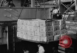 Image of Surplus food distributed for starving East Germans Germany, 1951, second 12 stock footage video 65675072259
