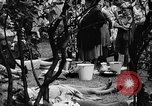 Image of Surplus food distributed for starving East Germans Germany, 1951, second 55 stock footage video 65675072259