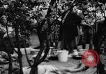 Image of Surplus food distributed for starving East Germans Germany, 1951, second 58 stock footage video 65675072259
