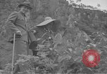 Image of President and Madame Chiang Kai Shek China, 1948, second 18 stock footage video 65675072370