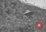 Image of President and Madame Chiang Kai Shek China, 1948, second 20 stock footage video 65675072370
