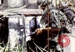 Image of Tet Offensive Saigon Vietnam, 1968, second 35 stock footage video 65675072387