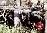 Image of Tet Offensive Saigon Vietnam, 1968, second 38 stock footage video 65675072387