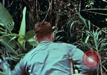 Image of survival techniques Philippines, 1968, second 4 stock footage video 65675072400