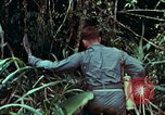 Image of survival techniques Philippines, 1968, second 7 stock footage video 65675072400