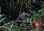 Image of survival techniques Philippines, 1968, second 10 stock footage video 65675072400