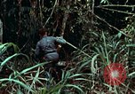 Image of survival techniques Philippines, 1968, second 13 stock footage video 65675072400