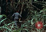 Image of survival techniques Philippines, 1968, second 14 stock footage video 65675072400