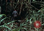 Image of survival techniques Philippines, 1968, second 16 stock footage video 65675072400