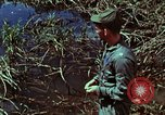 Image of survival techniques Philippines, 1968, second 44 stock footage video 65675072400