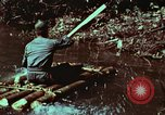 Image of survival techniques Philippines, 1968, second 28 stock footage video 65675072402