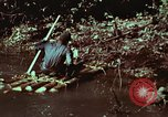 Image of survival techniques Philippines, 1968, second 33 stock footage video 65675072402