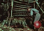 Image of survival techniques Philippines, 1968, second 23 stock footage video 65675072403