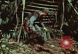 Image of survival techniques Philippines, 1968, second 29 stock footage video 65675072403