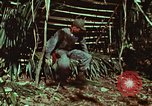 Image of survival techniques Philippines, 1968, second 31 stock footage video 65675072403