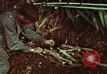 Image of survival techniques Philippines, 1968, second 48 stock footage video 65675072403